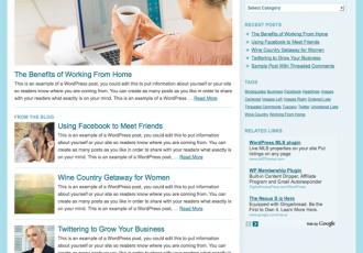 Bildschirmfoto des Social Eyes Theme für Genesis von StudioPress